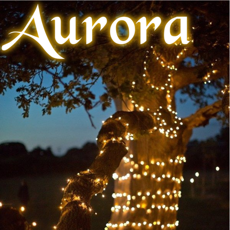 Aurora PRO solcelle lyskæde (300 LED, varm hvid)