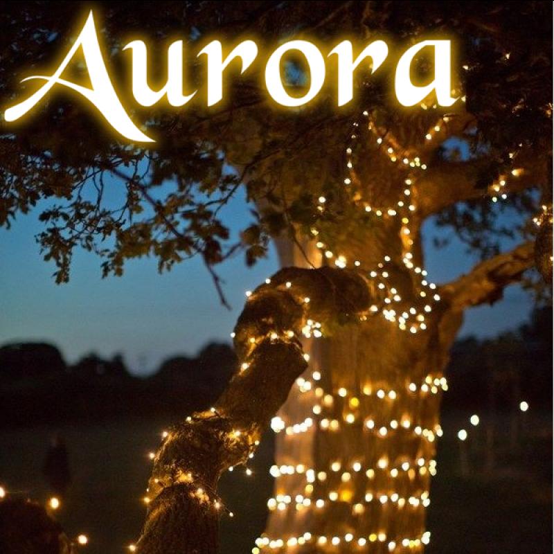 Aurora PRO solcelle lyskæde (100 LED, varm hvid)