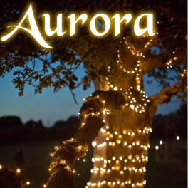 Aurora PRO solcelle lyskæde (100 LED, varm hvid)-20